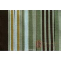 Rosella stripe C85